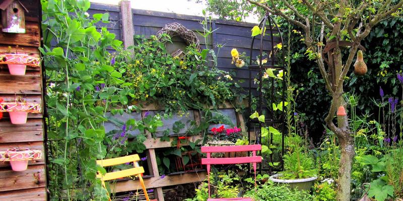Guest Picks: Mrs. Lilien's Punchy Veranda