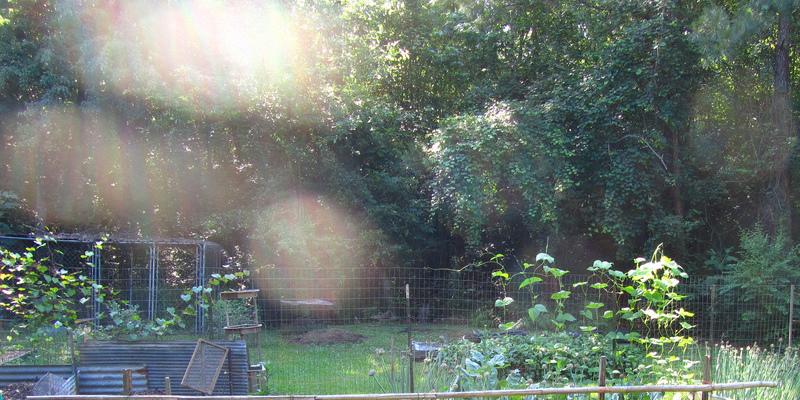 Solar Composting